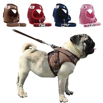 ShunHoo Arneses de Chaleco para Perros para Perros pequeños ...