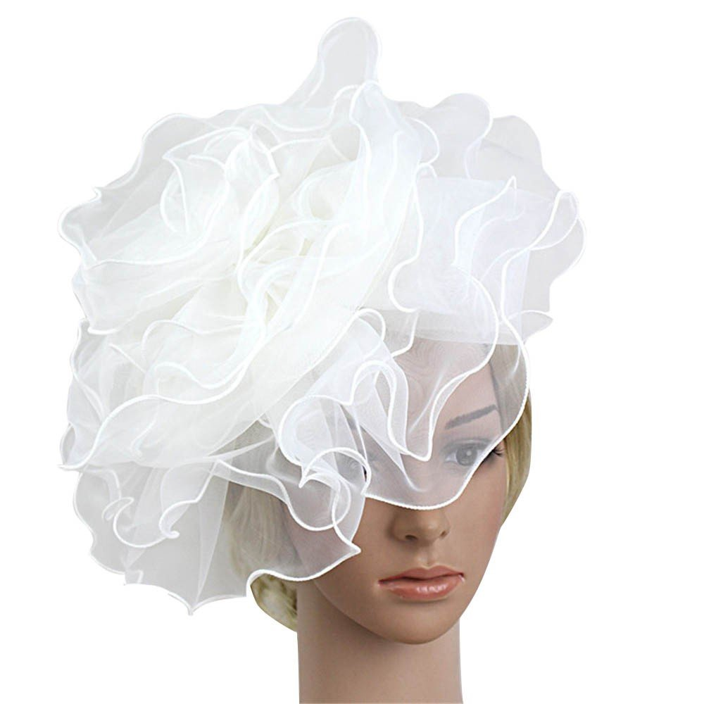 Jaysis Women Fashion Wedding Mesh Hat Fascinator Penny Ribbons and Feathers Party BK