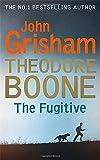 Theodore Boone: The Fugitive: Theodore Boone 5