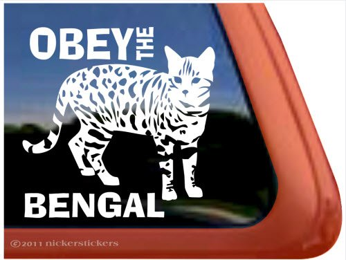 Obey the Bengal ~ Bengal Cat Vinyl Window Decal
