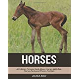 Horses: A Children Pictures Book About Horses With Fun Horses Facts and Photos For Kids