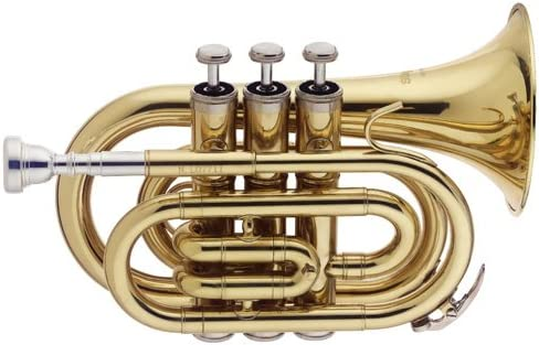 Stagg WS-TR245S Trompette poche SIB Etui Or