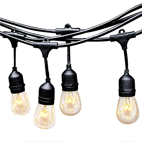 EAGWELL Outdoor Commercial String Lights 24 Feet Long with 12 Hanging Dropped Sockets- 12 S14 Incandescent Bulbs Outdoor Edison Lights- 14 Gauge Black Wire Heavy Duty Weatherproof Lighting Strands (Commercial String Lighting compare prices)