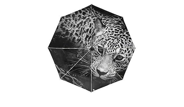 COOSUN Blanco y Negro Retrato de Jaguar automático 3 Plegable del Paraguas del Parasol Color # 002: Amazon.es: Equipaje