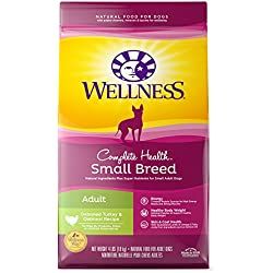 Wellness Complete Health Natural Dry Small Breed Dog Food, Turkey & Oatmeal, 4-Pound Bag