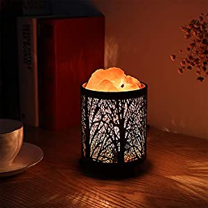 Natural Himalayan Salt Lamp, Zanflare Air Purifying Crystal Salt Rock Lamp Night Light With Forest Design Metal Basket…