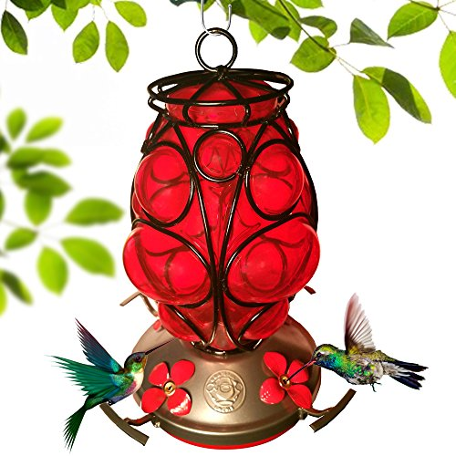 Grateful Gnome - Hummingbird Feeder - Hand Blown Glass - Morrocaan Lantern (Lantern Gnome)