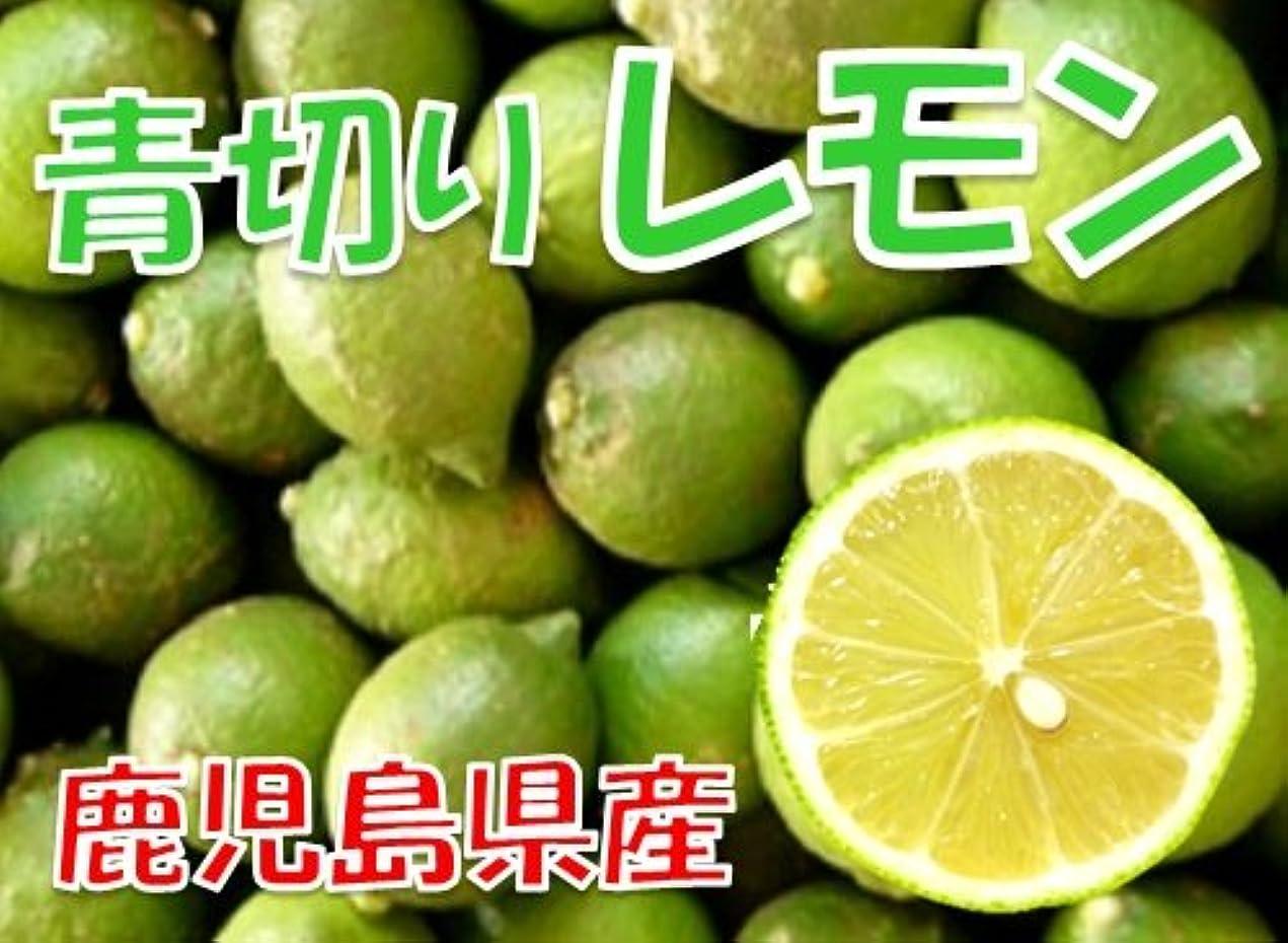 太平洋諸島国民裏切り広島 レモン 1kg 有機肥料栽培 防カビ剤不使用 れもん [新物]