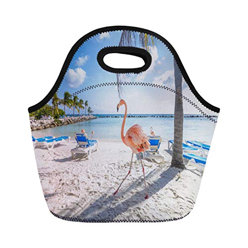- Semtomn Lunch Bags Nature Blue Aruba Three Flamingos Beach Pink Environment Sea Neoprene Lunch Bag Lunchbox Tote Bag Portable Picnic Bag Cooler Bag