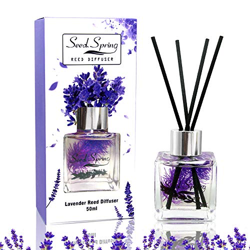 Seed Spring Reed Diffuser Set Lavender Aromatherapy Oil Effectively Improve