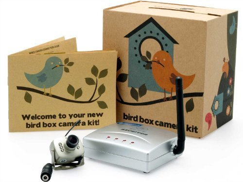 Wireless Bird House Camera and Receiver Kit with Night Visio