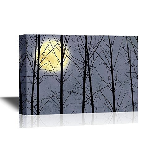 Bright Full Moon Viewed Through Black Tree Branches Gallery
