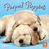 Pooped Puppies 2011 Wall Calendar (Calendar)