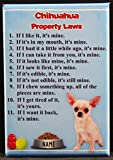 Chihuahua Property Laws Refrigerator Magnet.