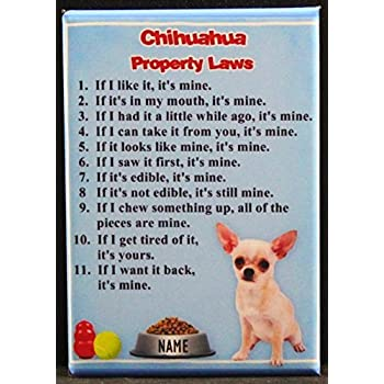 CHIHUAHUA Property Laws MAGNET No 1 Steel Cased DOG