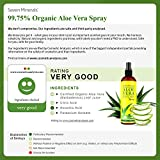 Travel Size Organic Aloe Vera Spray with