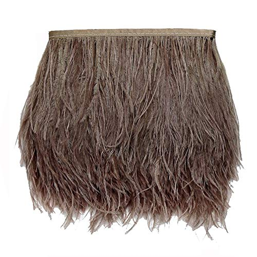 Lanpeed Ostrich Feather 4-6inch Trim Fringe for Wedding Sewing Crafts Costumes Decoration DIY Catwalk (10Yards, -