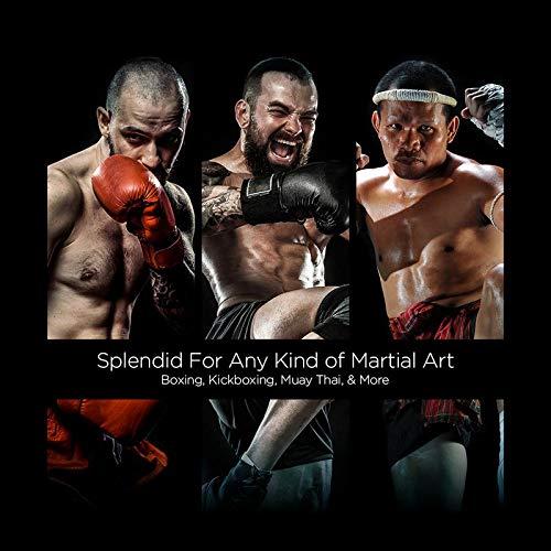 Combat Sports Mexican Boxing Handwraps
