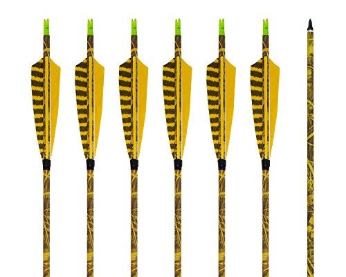 ARCHERY SHARLY [6 Pack] 31Inch Carbon Arrow Practice Hunting Arrows with 5