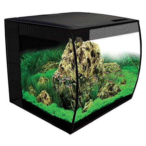 Fluval Flex 57 - 15 Gallon Nano Glass Aquarium Kit (Fluval Fish Tank)