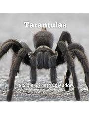 Tarantulas 8.5 X 8.5 Photo Calendar September 2021 -December 2022: Monthly Calendar with U.S./UK/ Canadian/Christian/Jewish/Muslim Holidays- Insects Nature Bugs