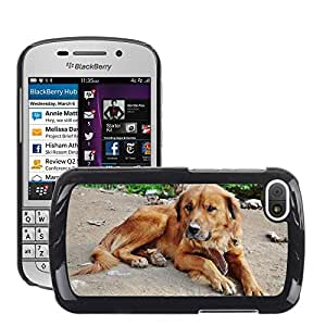 Super Stella Slim PC Hard Case Cover Skin Armor Shell Protection // M00147995 Hound Dog Sweet Pup Puppy Fur // BlackBerry Q10