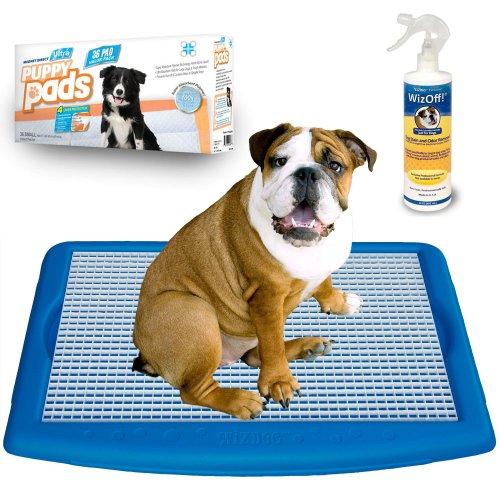 Wizdog Indoor Dog Potty Starter Kit