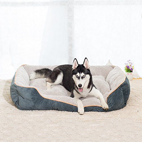 Amazon.com : KAI Creative Dog Mat Dog Bed Cat Bed?A 1209024cm : Pet Supplies