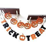 Alinktrend Pumpkin Halloween Decoration Kit- Adorable Felt Letters Garlands Decor Halloween Banners Set (Orange)