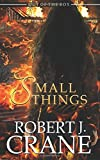 Small Things (Out of the Box) (Volume 14)