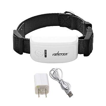 Bouder GPS Tracker Micro TK909 - Localizador GPS para Perros y Gatos, Resistente al Agua: Amazon.es: Productos para mascotas