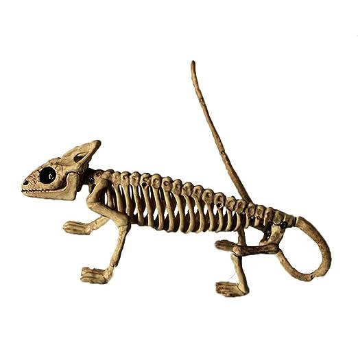 Heetey - Decoración para Halloween, diseño de Esqueleto ...