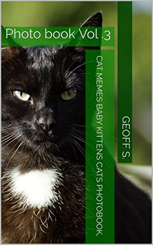 Very Cutest Cat Cutest Kittens Cats Photobook For Kids Cat Memes Baby Kittens Cats Photobook, Cat Sebastian, Cat Bybee, Cat) Vol.3 (Photo Book 1) Download.zip