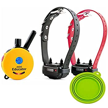 Pet Supplies Best Dog Training e Collar - Educator Remote Trainer System - Waterproof - Vibration Tapping Sensation with eOutletDeals Value Bundle (1/2 Mile 2 Dog w/Free eOutletDeals Pet Bowl)