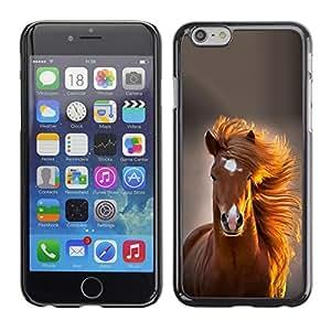 All Phone Most Case / Hard PC Metal piece Shell Slim Cover Protective Case Carcasa Funda Caso de protección para Apple Iphone 6 Plus 5.5 mane horse golden brown summer
