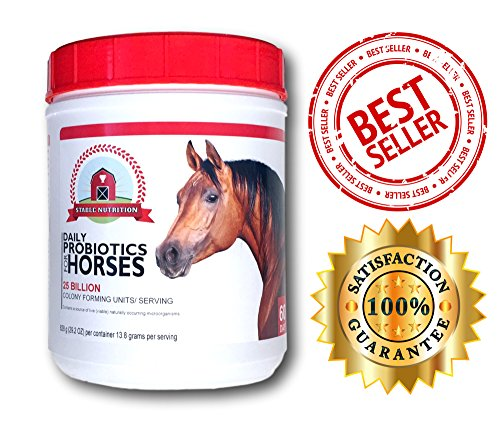 Stable Nutrition THE BEST Probiotics for Horses (60 Day) Equine Digestive Aid Supplement