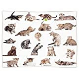 iPrint Super Soft Throw Blanket Custom Design Cozy Fleece Blanket,Cat,Collection of Funny Playful Baby Kitten Pet Scottish Tabby Striped Pussu Animal Design,Grey White,Perfect for Couch Sofa or Bed