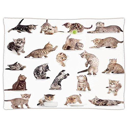 iPrint Super Soft Throw Blanket Custom Design Cozy Fleece Blanket,Cat,Collection of Funny Playful Baby Kitten Pet Scottish Tabby Striped Pussu Animal Design,Grey White,Perfect for Couch Sofa or Bed by iPrint
