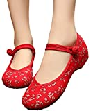 chinese red packages - AvaCostume Womens Flower Painting Flats Mary Jane Qipao Dress Shoes, Red 37