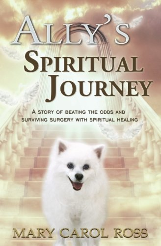 Ally's Spiritual Journey: A Story of Beating the Odds and Surviving Surgery with Spiritual Healing