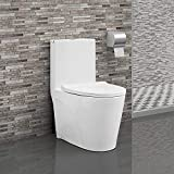 Best Toilets - Swiss Madison SM-1T254 St. Tropez One Piece Toilet Review