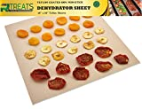 RL Treats - Superior Premium Pack of 9 Pack Super Non-stick, Food Dehydrator Sheets Teflon Re-usable Sheet Measures 14'' X 14'' Fits Excalibur 5 and 9 Trays, Easly cut to fit
