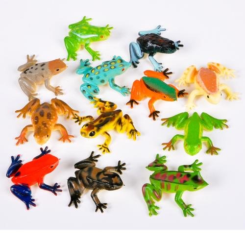12 Poison Dart Frogs 2 Inch -