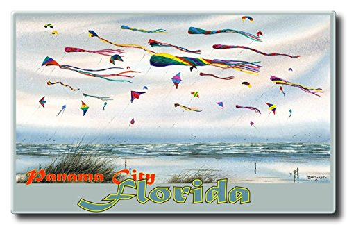 Panama City Florida Flying Kites Aluminum HD Metal Wall Art by Artist Dave Bartholet (9 x 14.4 inch) Art Print for Bedroom, Living Room, Kitchen, Family and Dorm Room Wall - Mall Parkway City