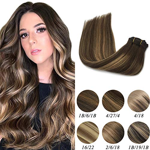 Labeh Hair Extensions Clip in Human Hair Ombre Chocolate Brown #4 Highlighted #27 Honey Blonde Clip in Hair Extensions 100% Remy Real Human Hair Extensions 16inch Silky Straight 7pcs 120g