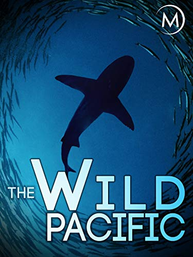 The Wild Pacific (Best Pa Programs In Us)