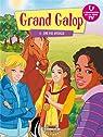 Grand Galop, Tome 8 : Une foi aveugle par Media