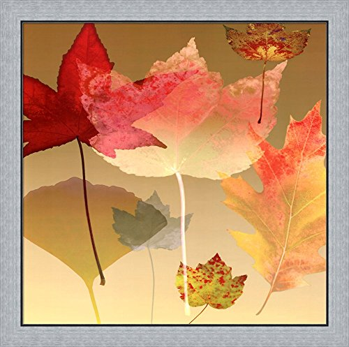Great Art Now Leaf Counterpoint by Robert Mertens Framed Art Print Wall Picture, Flat Silver Frame, 30 x 30 inches Robert Mertens Leaf