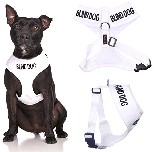Blind Dog White Color Coded Waterproof Padded Adjustable Non Pull Front and Back Ring Alert Warning Medium Vest Dog Harness Prevents Accidents By Warning Others of Your Dog in Advance
