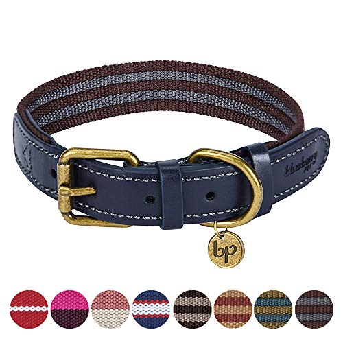 Blueberry Pet 8 Colors Polyester Fabric Webbing and Soft Genuine Leather Dog Collar in Noir Grey and Burgundy, Medium, Neck 15-18, Adjustable Collars for Dogs